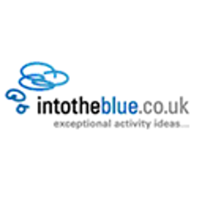 Into The Blue Coupons & Promo Codes